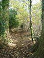 County Boundary Footpath in Mistleberry Wood - geograph.org.uk - 281198.jpg