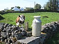 Cow and milk churn, Newtownmanor - geograph.org.uk - 799328.jpg