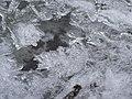 Creek (c3c8b972ffc24d9aa4e2c62ad5448e7d).JPG