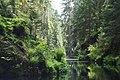 Creek through the green -5.jpg