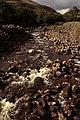 Cwm Haffes - geograph.org.uk - 150836.jpg