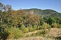 Dacian Fortress of Capalna 038.jpg