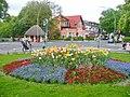 Dahlem-Dorf - Fruehlingsblumenbeet (Dahlem Village - Springtime Flower Bed) - geo.hlipp.de - 36472.jpg