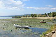 Danube near Brza Palanka (Брза Паланка) 03.jpg