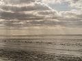 De Waddenzee.jpg