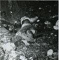 DeadJapaneseJan43.jpg