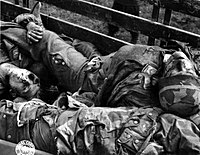 More than 5.5 million German soldiers died in World War II. German paratroopers (Fallschirmjäger) killed by American soldiers are stacked in a cart