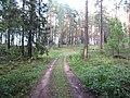 Degučių sen., Lithuania - panoramio (221).jpg