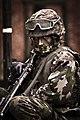 Der Grenadier (52904646).jpeg