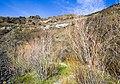 Deschutes Wild and Scenic River -- Beavertail (26096367256).jpg