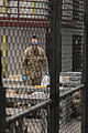 Detainee operations continue at Guantanamo DVIDS275562.jpg