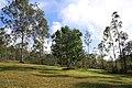 Dhammagiri Forest Hermitage, Buddhist Monastery, Brisbane, Australia www.dhammagiri.org.au 76.jpg