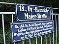 Dr. Heinrich Maier-Strasse.JPG