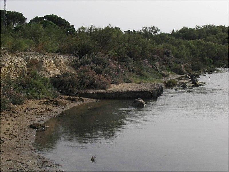 File:Drenaje del Caño de La Cortadura. - panoramio (2).jpg