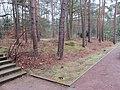 Dresden Heidefriedhof Massengräber überwachsen.JPG