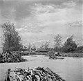 Drijfhout in een rivier bij de bivak op Java, Bestanddeelnr 254-5362.jpg