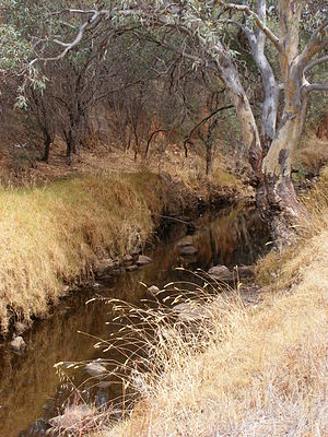 Dry Creek (South Australia) - Dry Creek at the rear of Yatala Labour Prison, March 2008