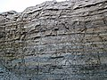 Dundee Limestone over Lucas Dolomite (Middle Devonian; Auglaize Quarry, near Junction, Ohio, USA) 14 (48889169482).jpg