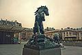 El caballo del Orsay (8134743724).jpg