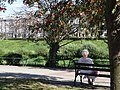 Elderly Woman by Bank of San River - Przemysl - Poland (36343099026).jpg