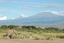 220px-Elephant_and_Kilimanjaro.jpg