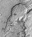 Elephant on Mars.jpg