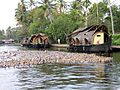 Enten backwaters.JPG
