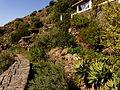 Entorno de la isla, Isla de Alicudi, Islas Eolias, Sicilia, Italia, 2015.JPG