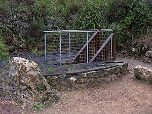Ngilgi Cave - Image: Entrance to Ngilgi Cave SMC 2008