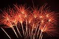 Exploding Flower Bed fireworks.jpg