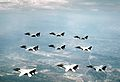 F-14A Tomcats of VF-51 in flight over NAS Miramar 1984.JPEG
