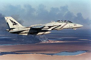 F-14B VF-143 over burning Kuwaiti oil wells 1990.JPEG