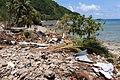 FEMA - 42039 - Damage in American Samoa.jpg
