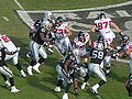 Falcons on offense at Atlanta at Oakland 11-2-08 08.JPG