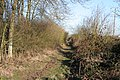 Farm Track near Old Dalby, Leicestershire - geograph.org.uk - 130651.jpg