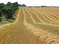 Farmland near Shrewton - geograph.org.uk - 522652.jpg