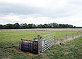 Field near Dorsington - geograph.org.uk - 55858.jpg