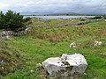 Field with erratic boulder - geograph.org.uk - 1431162.jpg
