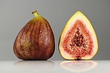 Fig (Ficus carica) fruits.jpg