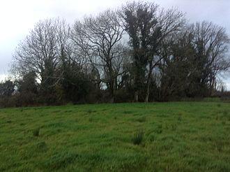 Plague of Mohill - Finiskil (large, c. 25m) Ringfort, Mohill, Co. Leitrim