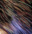 Fireworks (6021708762).jpg