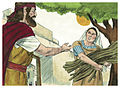 First Book of Kings Chapter 17-3 (Bible Illustrations by Sweet Media).jpg