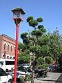Fisgard St. (17.08.06) - panoramio - sergfokin (4).jpg