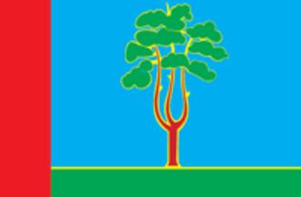 Chernogolovka - Image: Flag of Chernogolovka (Moscow oblast)