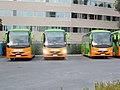 Flixbus (PRF-939), (PRF-936) és (PRF-935), Népliget Bus Station, 2019 Ferencváros.jpg