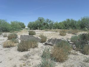 Florence, Arizona - The Ruins of Levi Ruggles House. The house was built in 1866 and the ruins are located in Ruggles St. between Quartz and Willow Streets.