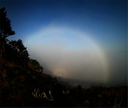 Fogbow spectre at the bay.jpg