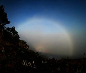 Fog bow - A fog bow, solar glory and Brocken spectre observed in San Francisco