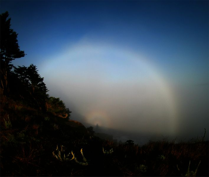 File:Fogbow spectre at the bay.jpg