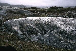 Lewisian complex - Folded Lewisian gneiss, Harris